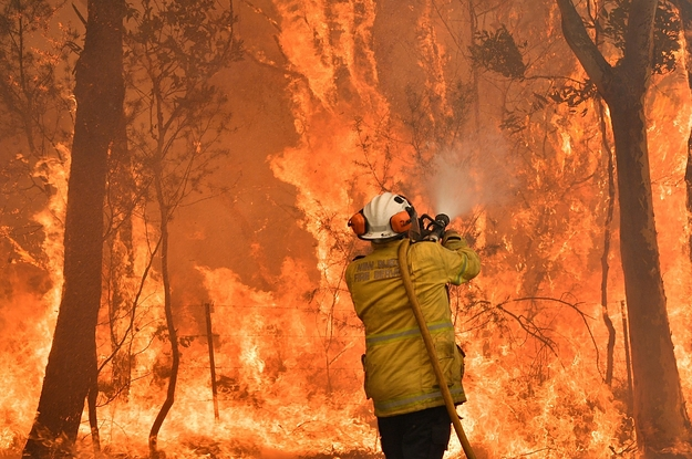 Opinion: Australia Is On Fire. Soon The Whole World Will Be.