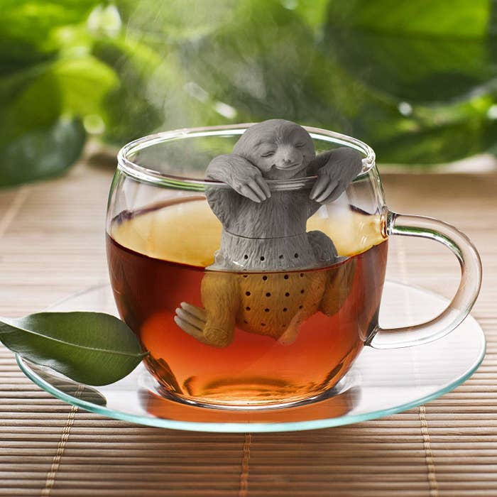 "A clear glass saucer is holding a clear glass mug. Inside of the mug, you can see tea and there is a gray sloth tea infuser that is hanging from the rim (with its ""paws"") and into the water for the tea."
