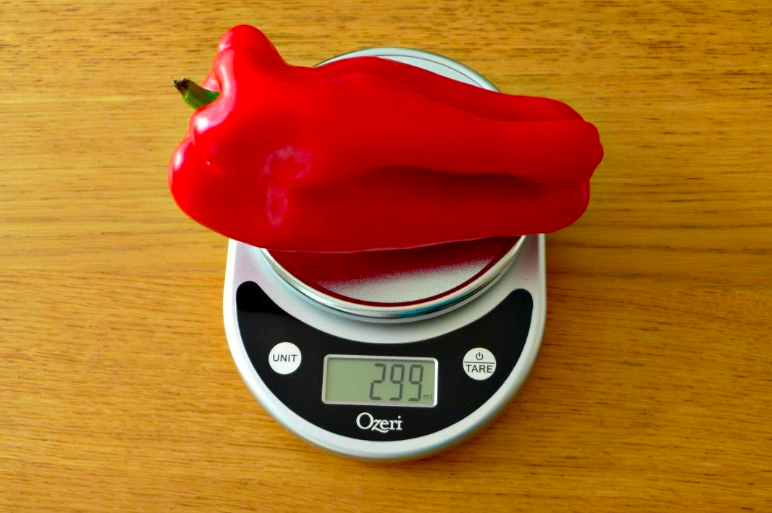 Small kitchen scale with pepper on top