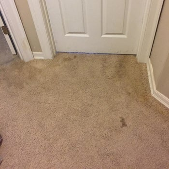 Reviewer photo of a stain on their carpet