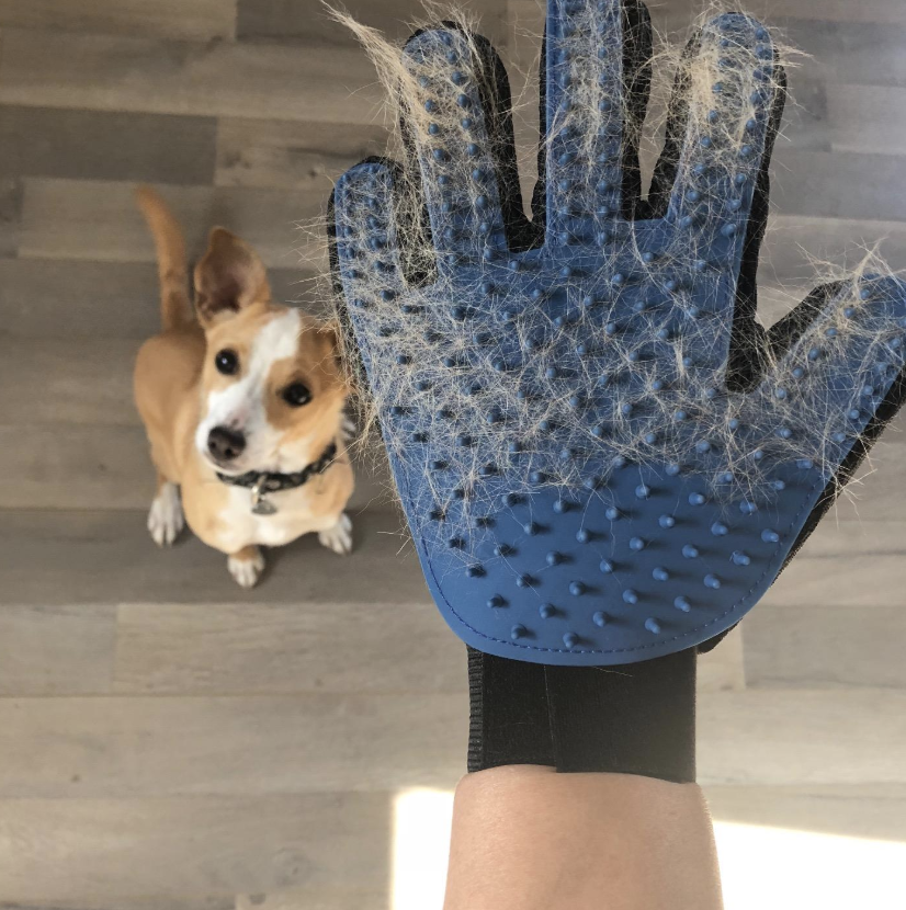 Reviewer wearing grooming mitt filled with fur
