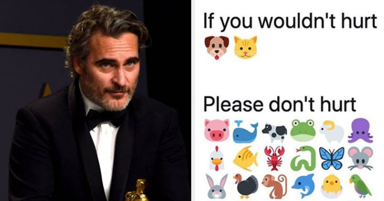 "If You Googled ""Speciesism"" After Joaquin Phoenix's Oscars Speech, You Are Not Alone"