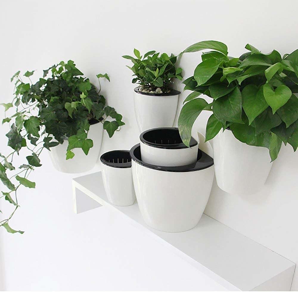 Several of the circular plant pots arranged on a minimalist shelf
