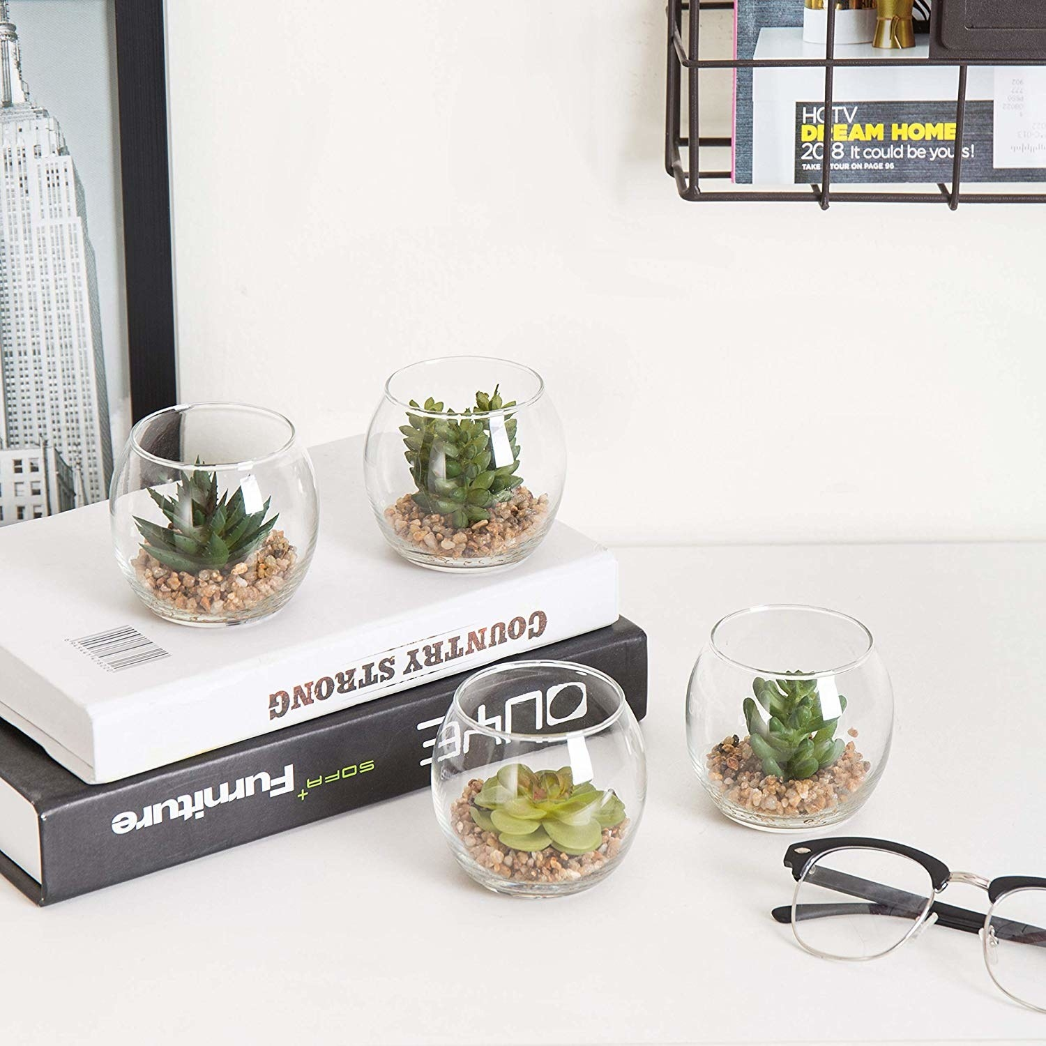 Four small succulents in transparent dome glasses and rocks at the bottom