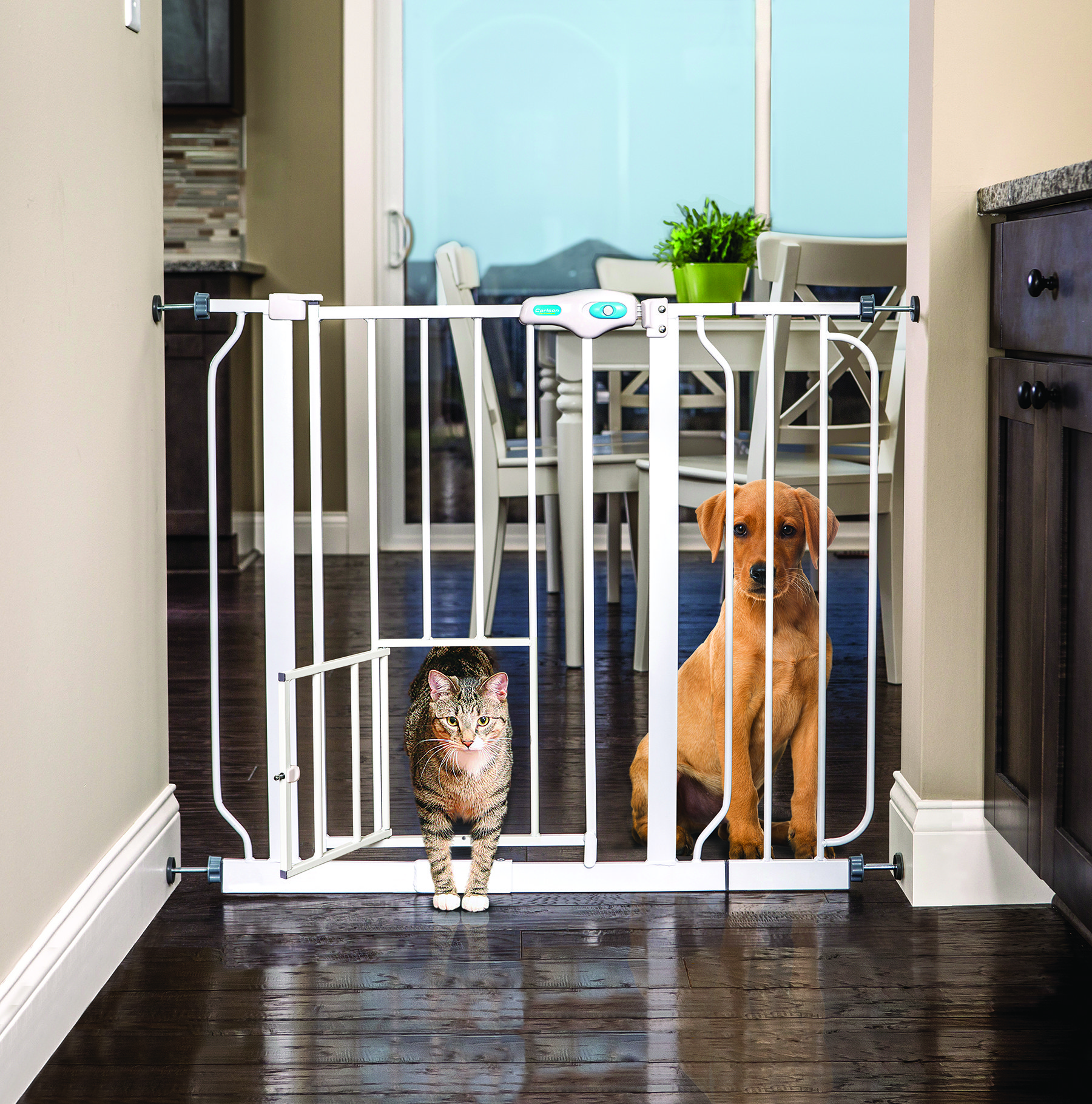 A pet gate with a small door that allows cat through but not larger pets