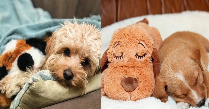 SmartPetLove's Snuggle Puppy Might Be The Solution To Your Dog's Separation Anxiety