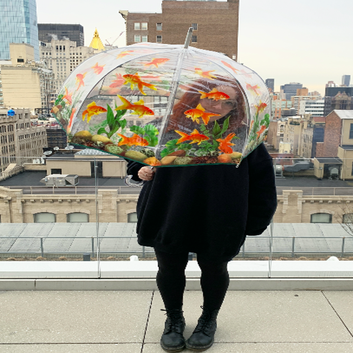 Person holding clear umbrella covered in goldfish and water plants