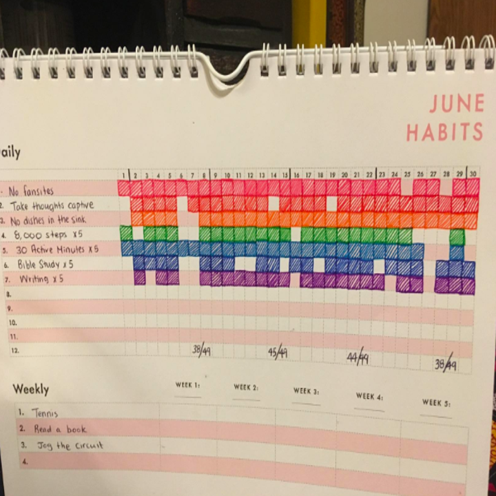 A reviewer's calendar filled in for June with daily habits written in and boxes next to it filled in for the days the task was done, plus a list of weekly goals in the tracker below
