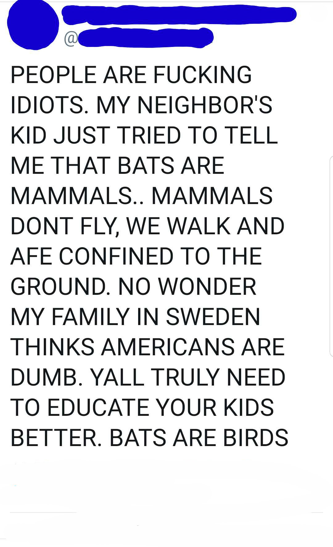 tweet of someone freaking out about how bats are birds