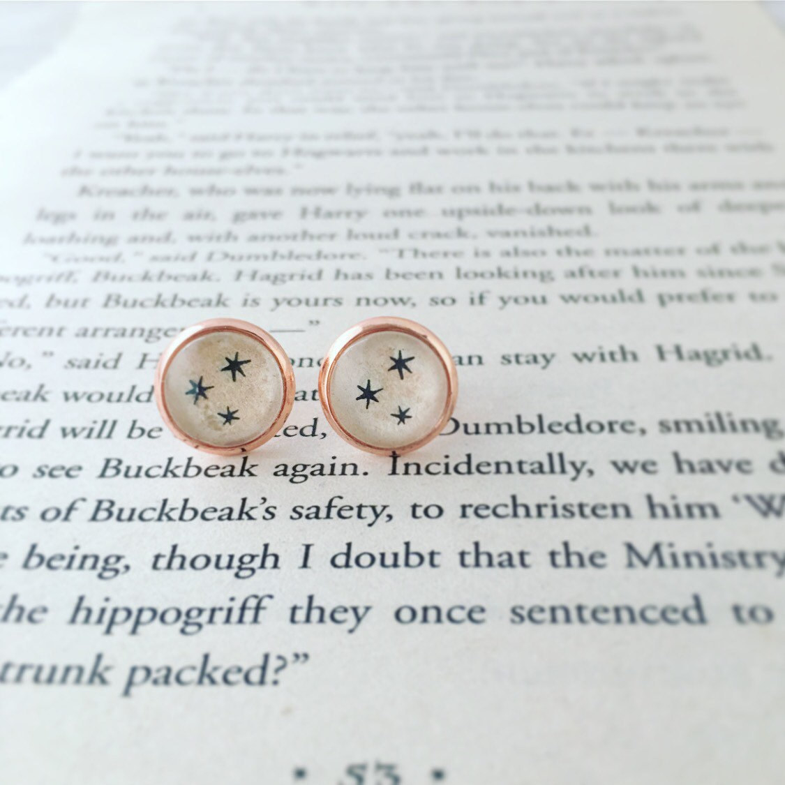 a pair of circular earrings with the harry potter stars inside