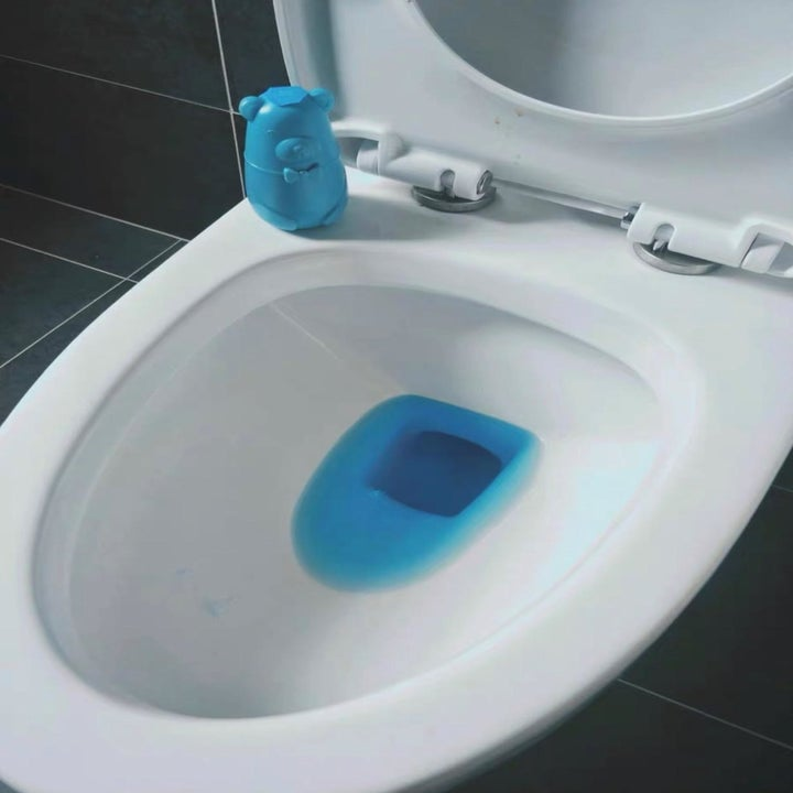blue bear next to toilet with blue water