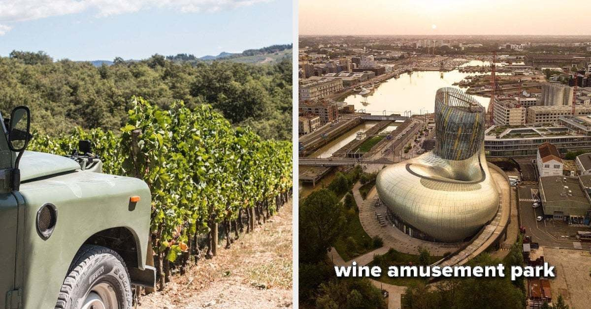 17 Trips You Should Take If You're Low-Key Obsessed With Wine