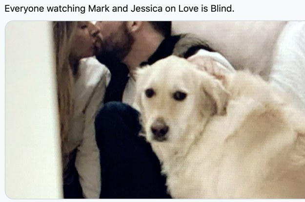 "24 MORE Tweets About ""Love Is Blind"" Because I Can't Get Enough Of That Show"