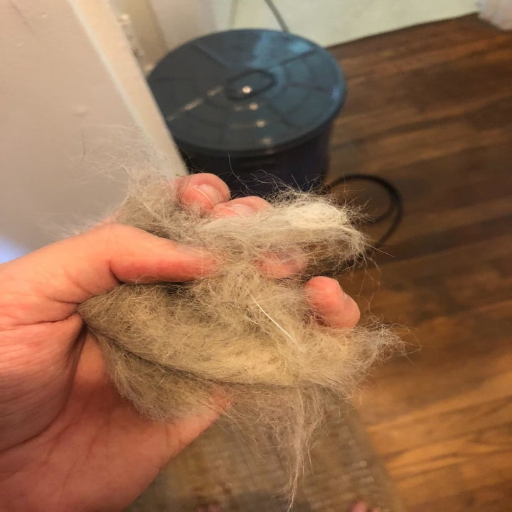 reviewer holding up clump of hair from the toy