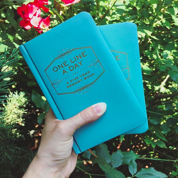 a reviewer holding the turquoise journal