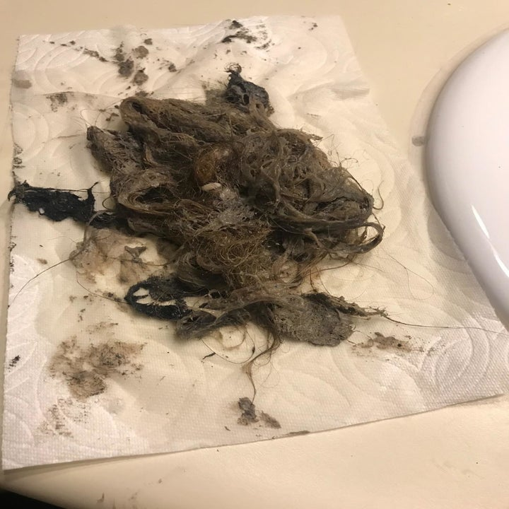 Reviewer showing a big pile of hair and gunk