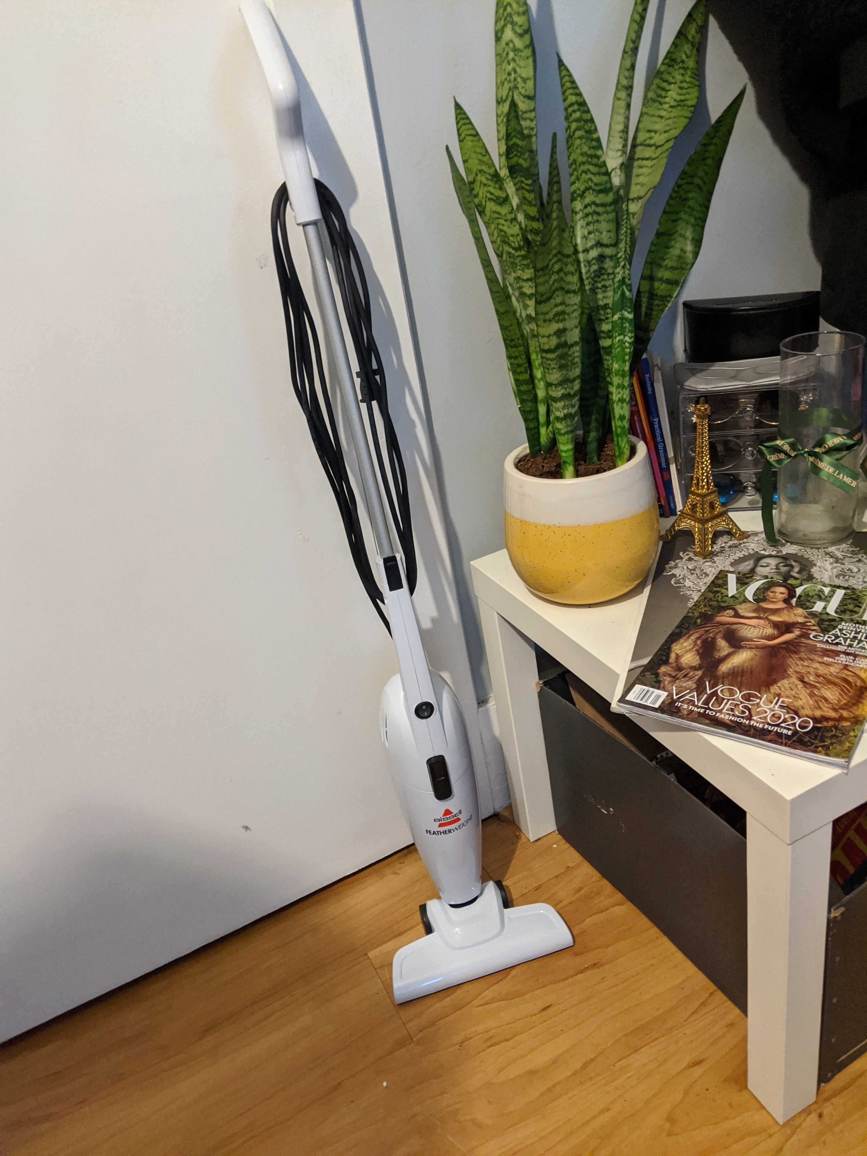 A small vacuum cleaner leaning against a door