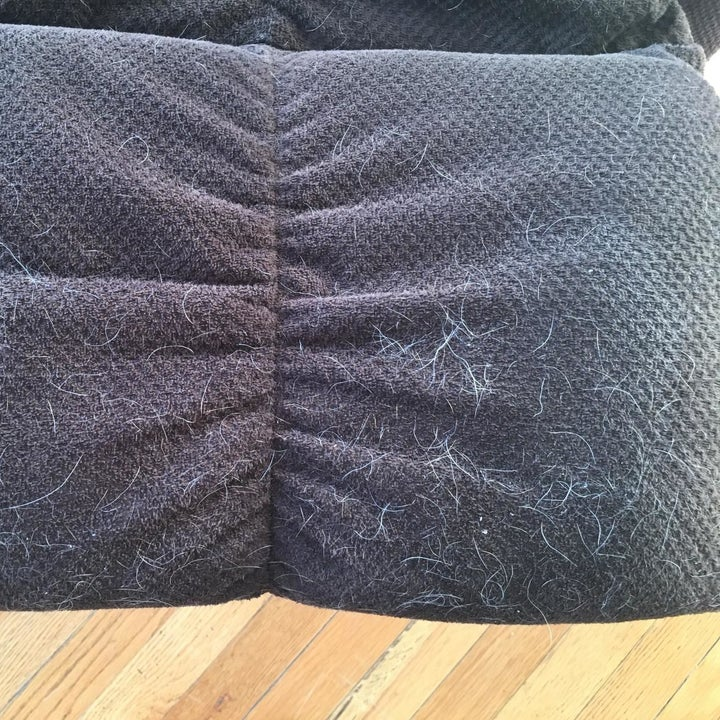 Before: part of a user's recliner, covered in pet air
