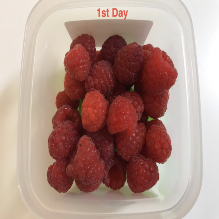 """A pack of fresh raspberries in the storage container with the caption """"first day"""""""
