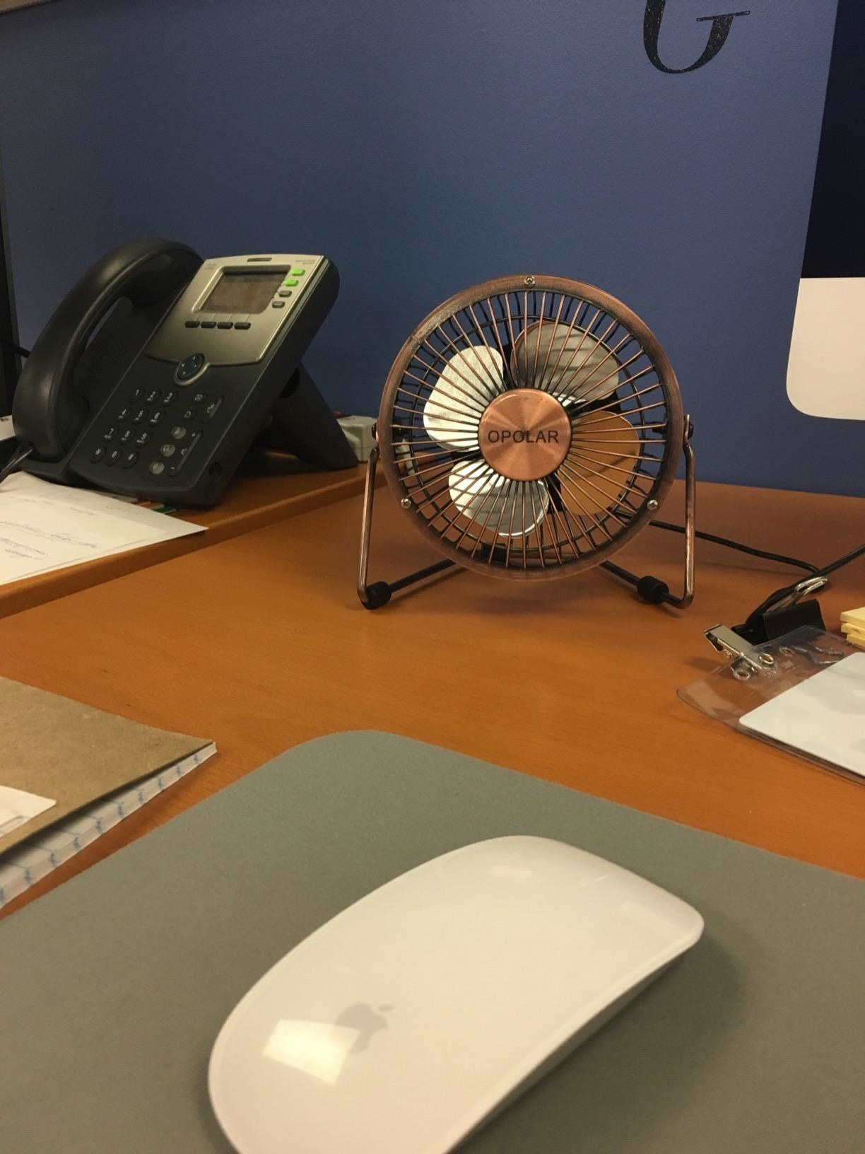 Reviewer image of mini brown fan on a desk