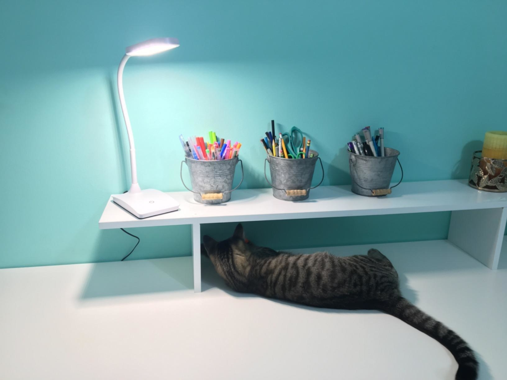 A white desk lamp with a sloped bending stand