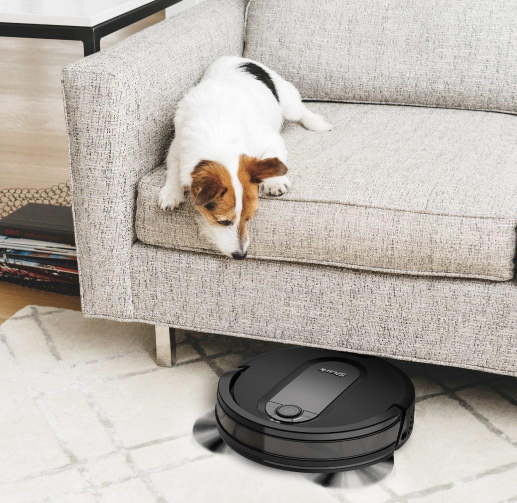The circular vacuum