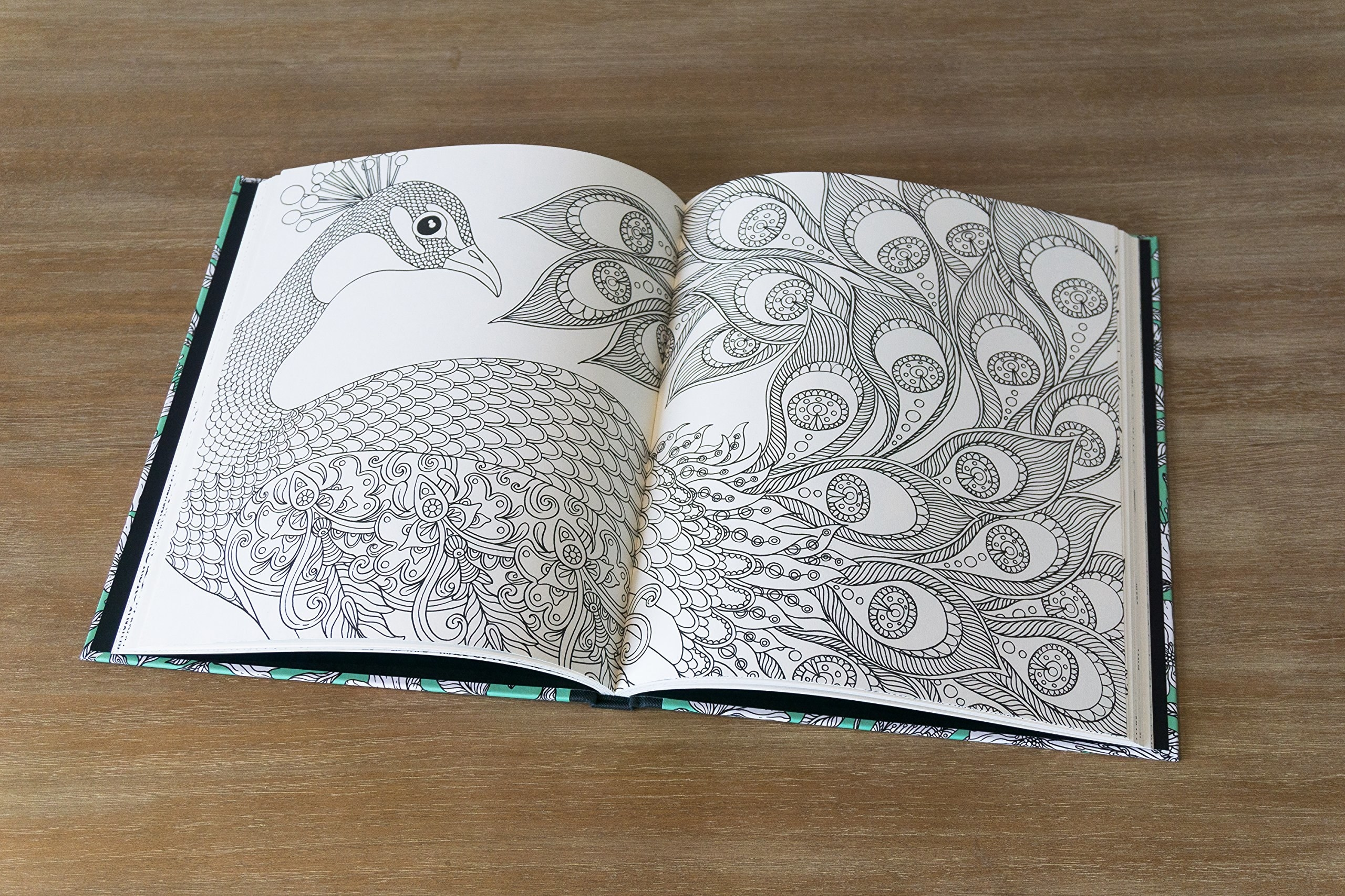 A peacock drawing in the colouring book