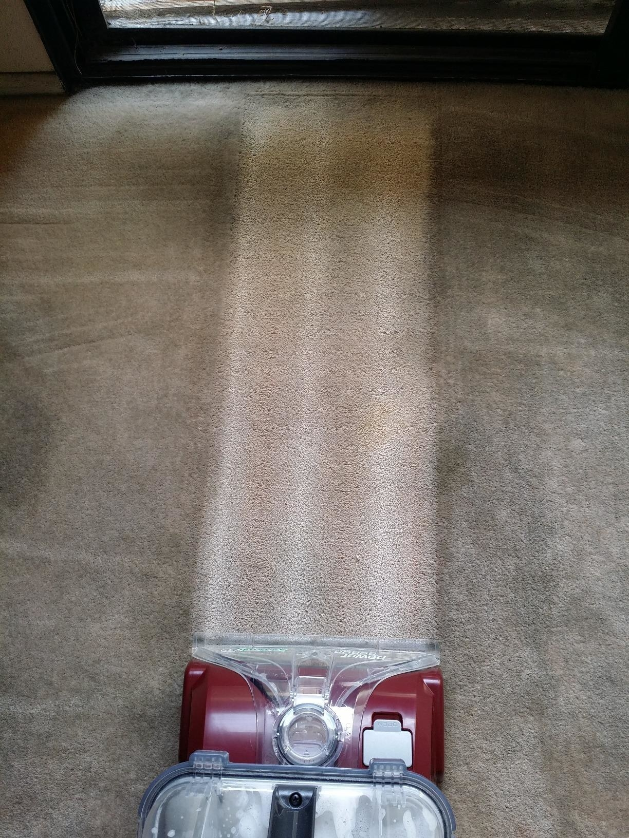 A dirty carpet interrupted by a single strip of white clean carpet where the carpet cleaner has cleaned