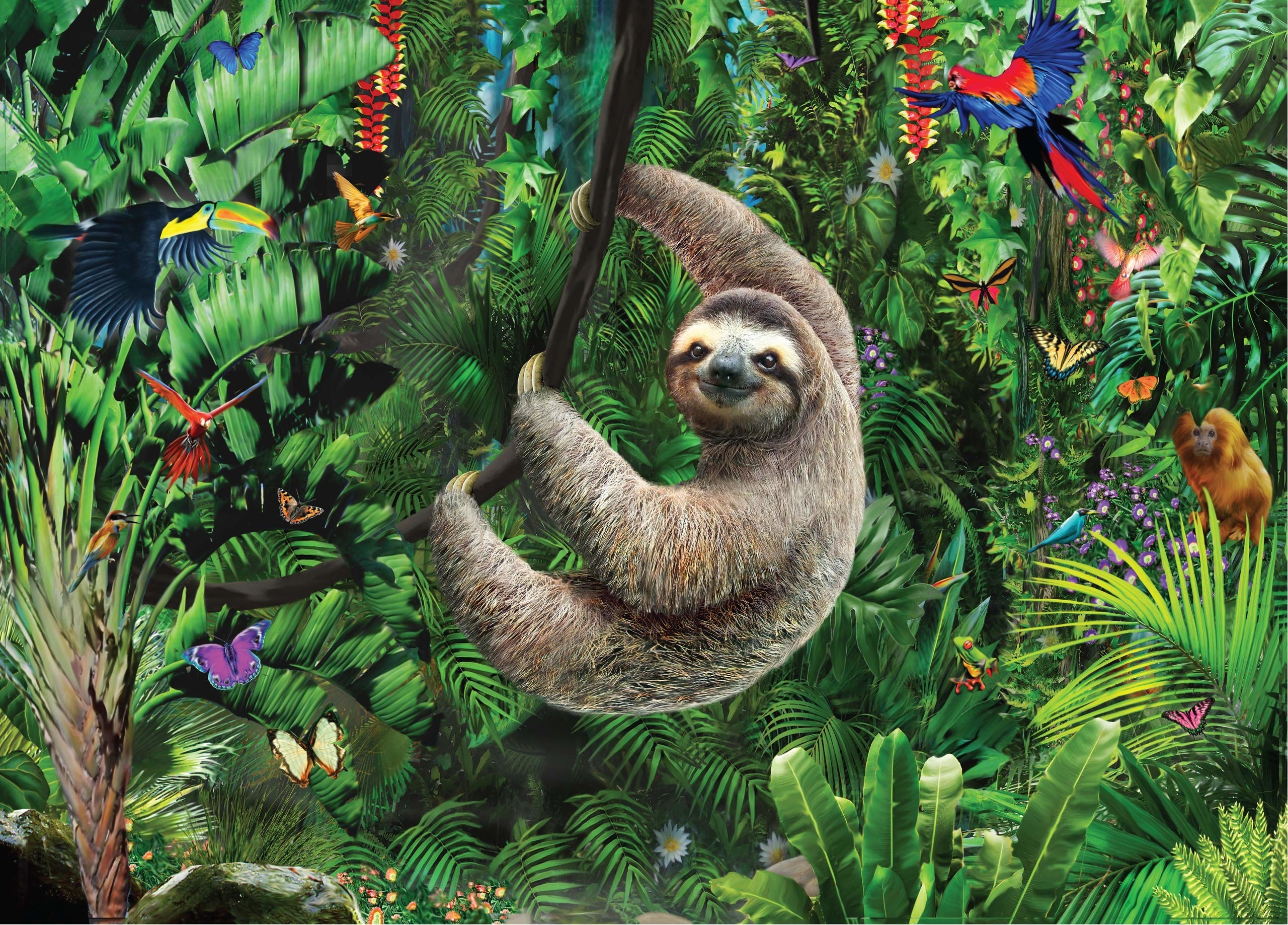 the sloth puzzle