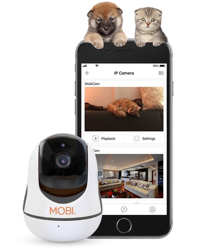 The pet cam and a smartphone