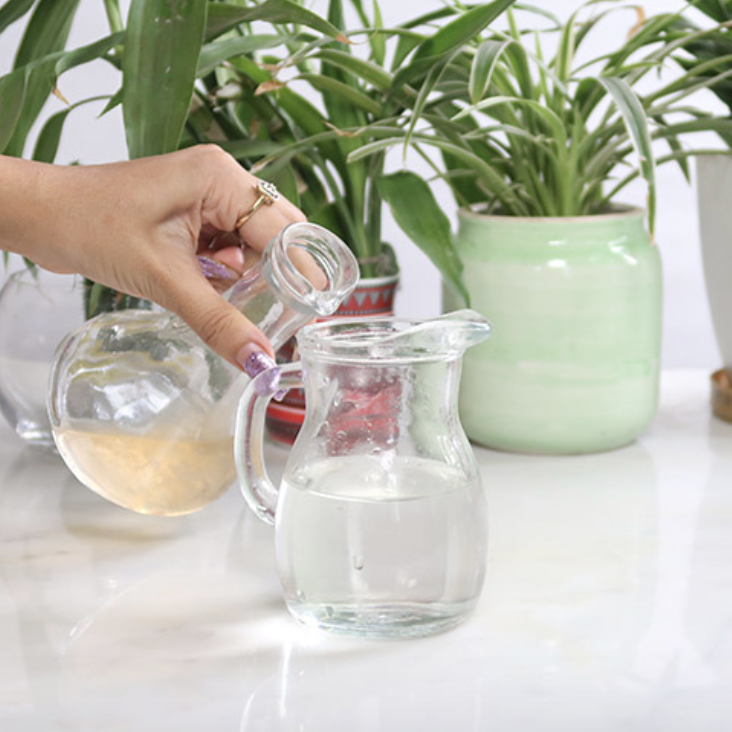 Hand pours mixture into glass container to make a skin toner