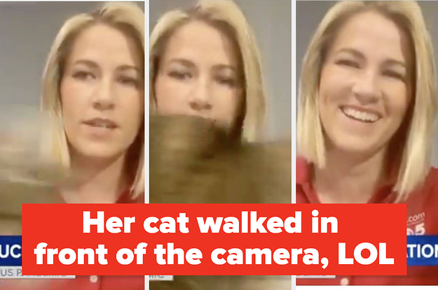 19 TV Reporters Struggling To Go Live From Home Who Are 100% Hilarious
