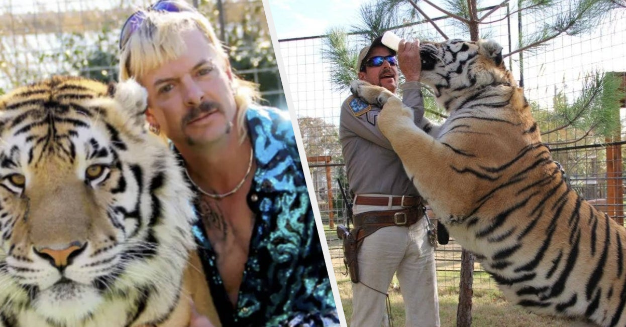 """16 Wild """"Tiger King"""" Trivia Facts, Just In Case The Netflix Show Wasn't Bonkers Enough Already"""
