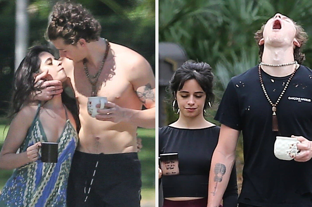 12 Things Shawn Mendes And Camila Cabello Are Doing During Quarantine
