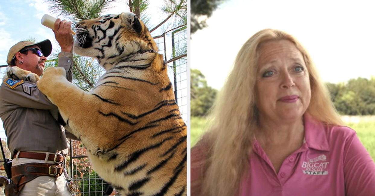 "Carole Baskin And PETA Urge The ""Tiger King"" Dramatic Series To Not Use Real Tigers"
