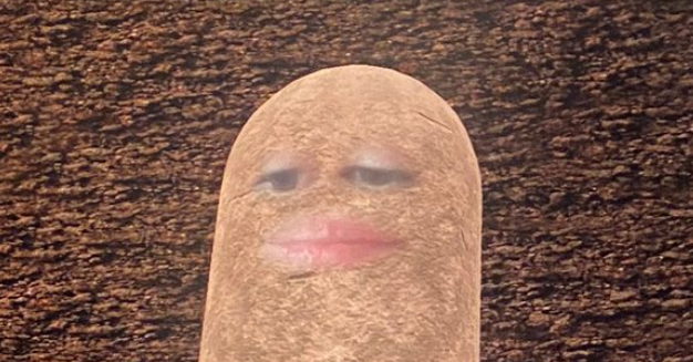 This Woman Accidentally Turned Herself Into A Potato For A Video Meeting And Couldn't Figure Out How To Fix It - BuzzFeed News