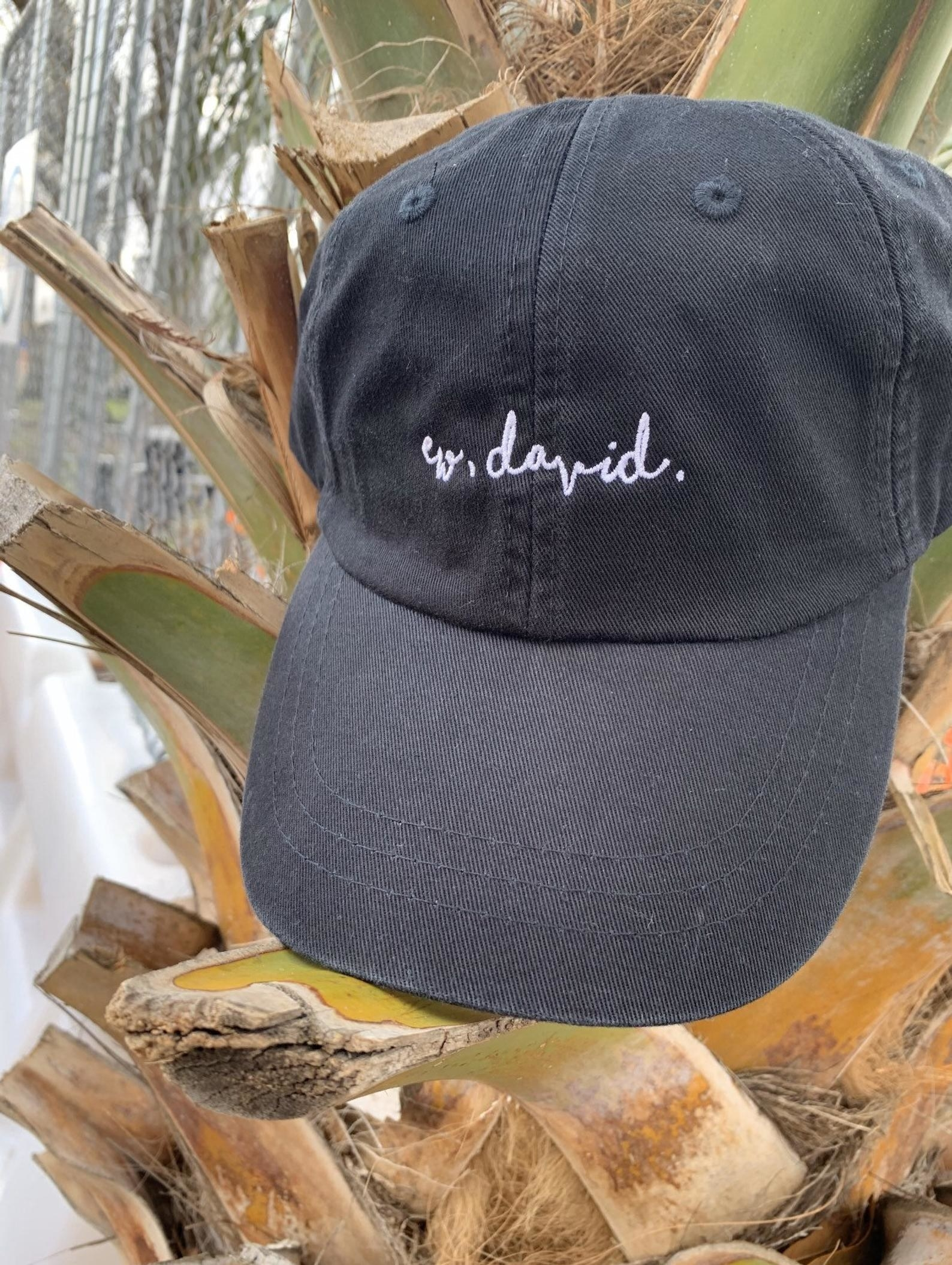 "black baseball hat that has white embroidered ""ew, david"" on the front"
