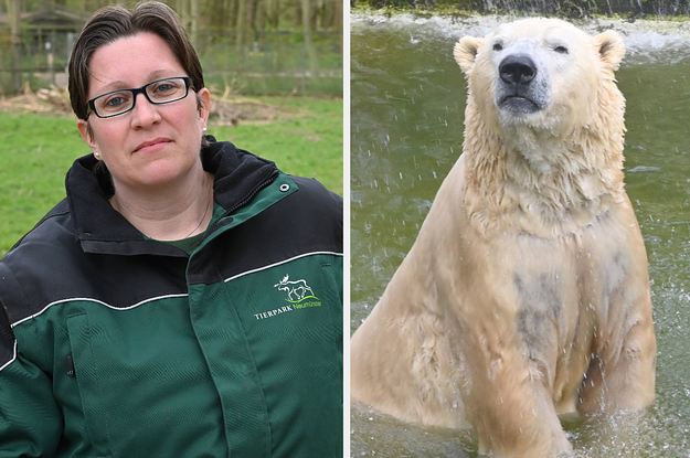 German Zoo May Feed Some Animals To Others Due To Coronavirus Closure