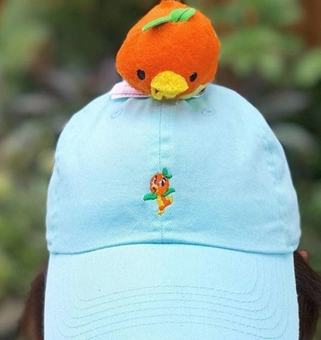 a light blue hat with an orange bird embroidered on it