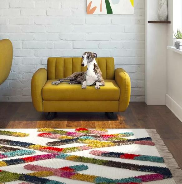 Dog sitting on mini mid-century modern mustard colored plush sofa