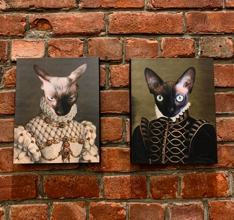 Two hairless cats wearing Renaissance clothes