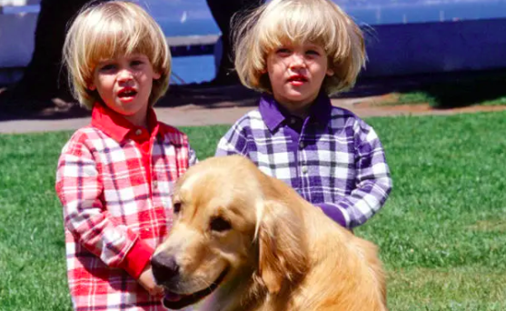 The twins and a golden retriever