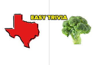 19 Easy Trivia Quizzes That Prove Everyone's An Expert At Something
