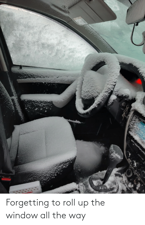 picture of snow inside a car