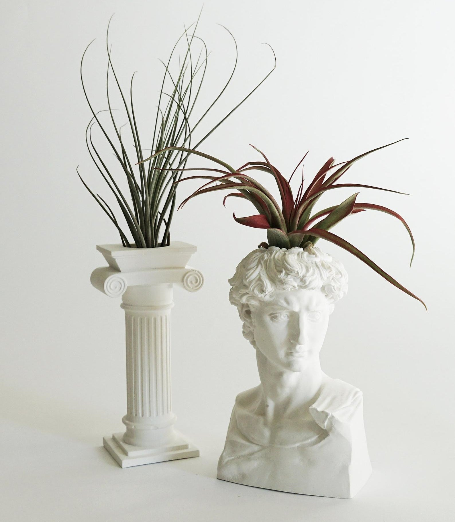 "A planter shaped like a old Roman column with an air plant sprouting from it and an air plant inside of a buttress shaped like the head of the historical Michaelangelo sculpture, ""David"""