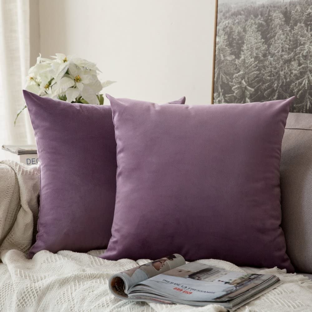 couch with two throw pillows on it with purple velvet colors on them