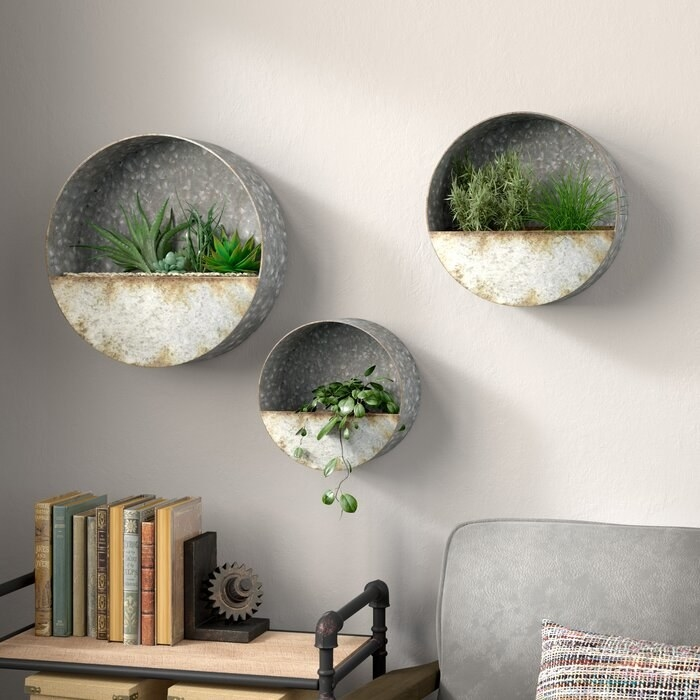 The round planters hung on a wall