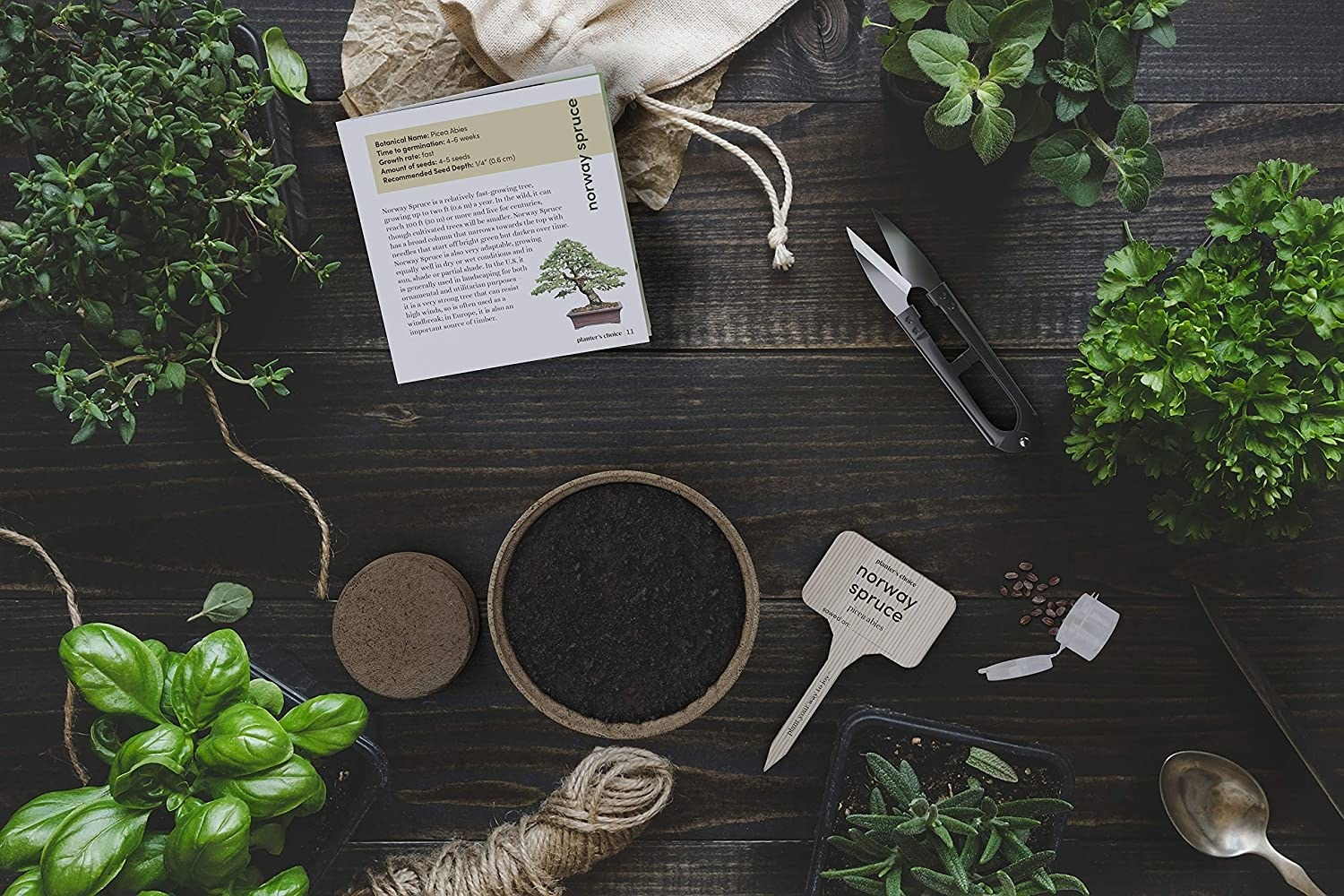 A shot of soil, labels, plants, twine, and instructions