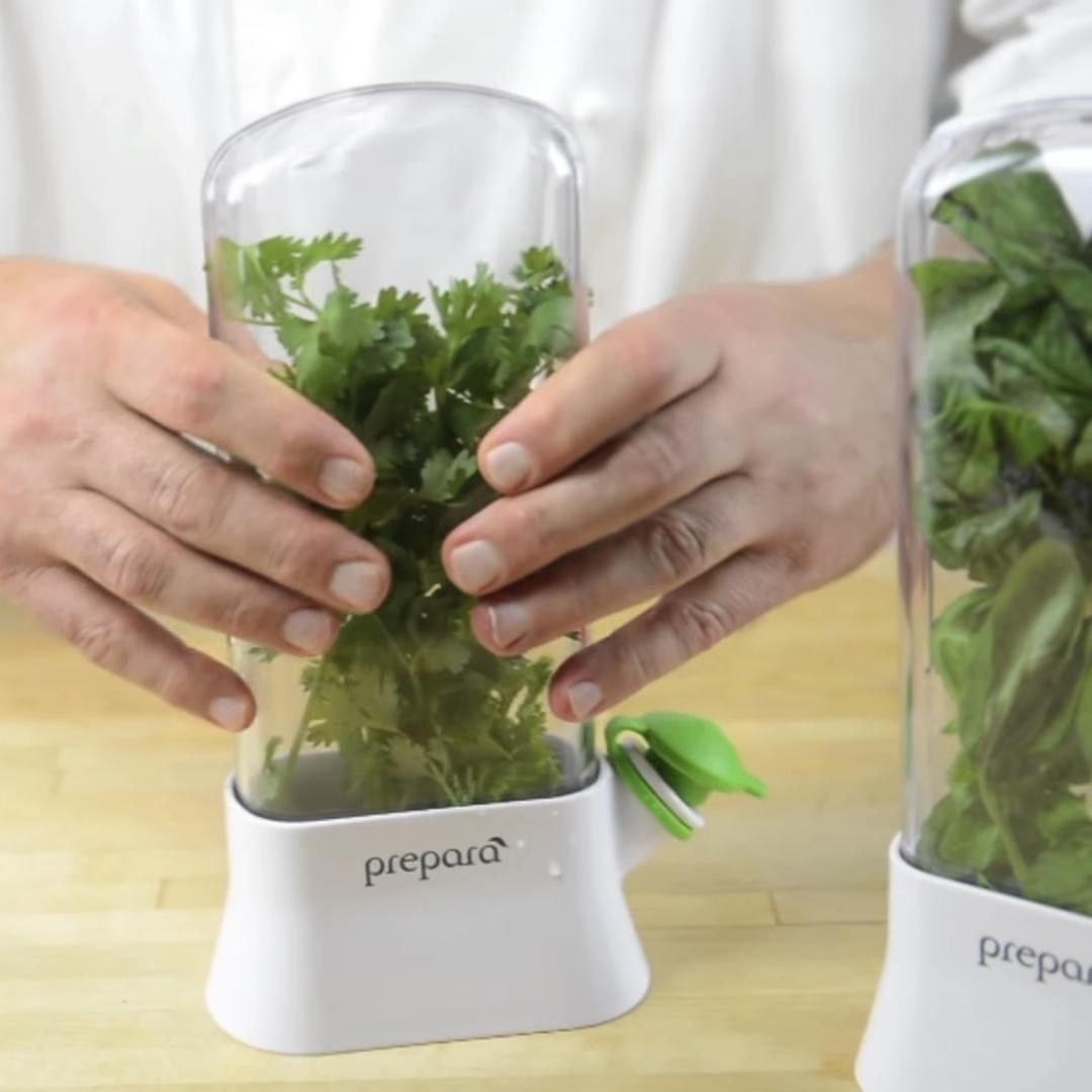 A slim transparent container with fresh herbs inside