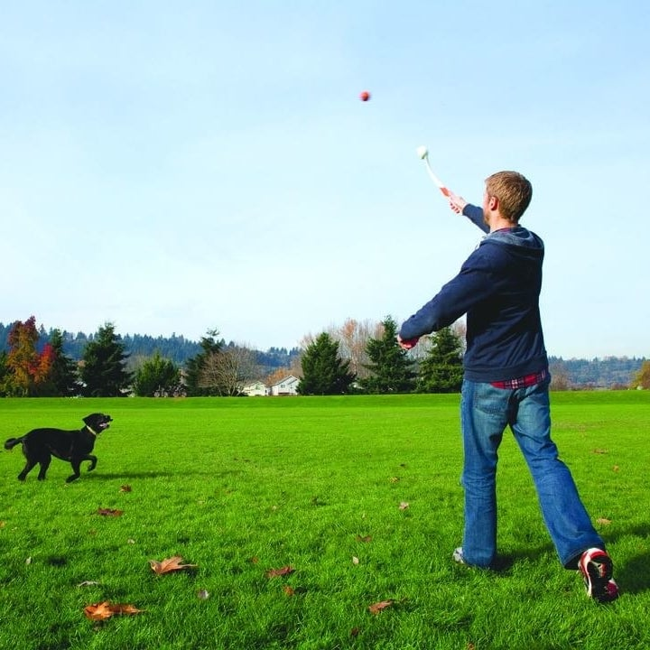 a person throwing a ball to their dog using the dog ball launcher